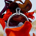 Gold engagement ring with 0.23ct Black Diamond i007dn - sale